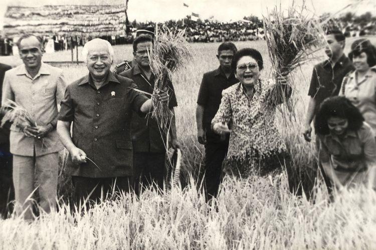 Presiden Soeharto dan Ibu Tien Soeharto mengangkat seikat tanaman padi saat menghadiri panen raya di lokasi transmigrasi Tanah Miring III, Kab. Manokwari, Irian Jaya, Sabtu (7/5/1994). Presiden dan Ibu melakukan kunjungan kerja di propinsi paling timur itu selama dua hari (6-7 Mei 1994).