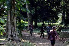 Kepala LIPI: Kebun Raya adalah Platform Riset