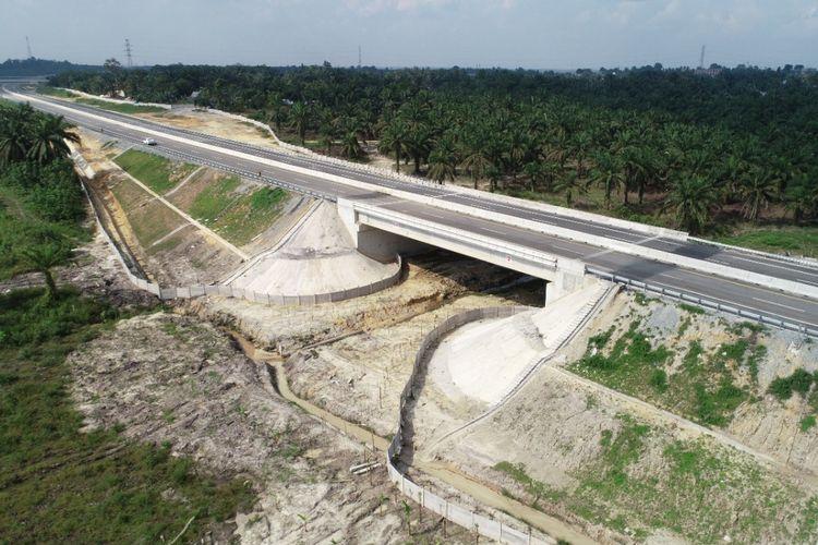 Underpass perlintasan gajah Tol Pekanbaru-Dumai.