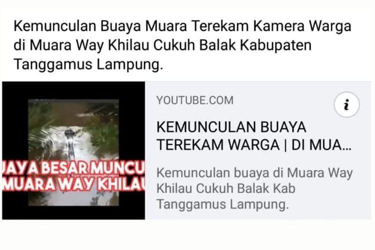 Status Facebook hoaks soal kemunculan buaya di Way Rilau, Cukuh Balak, Tanggamus, Lampung, pada 22 November 2020.