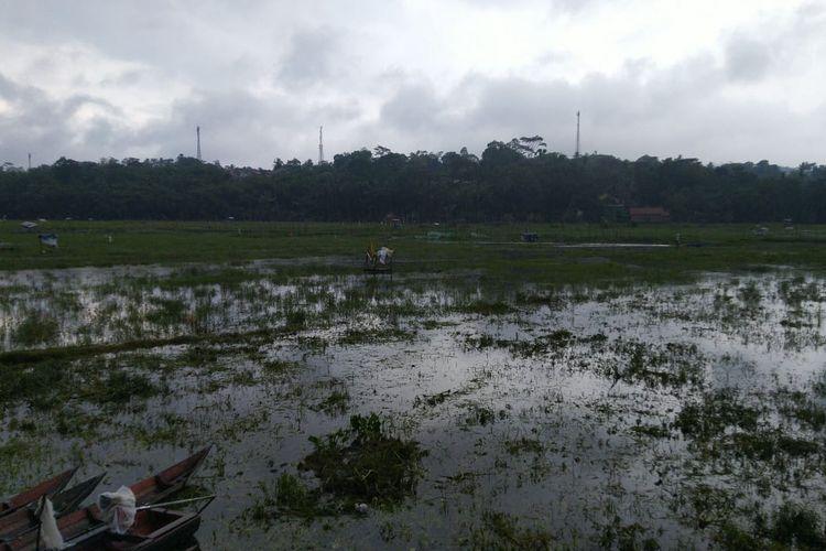 Sedimentasi di Rawa Pening menjadi salah satu sebab pencemaran.