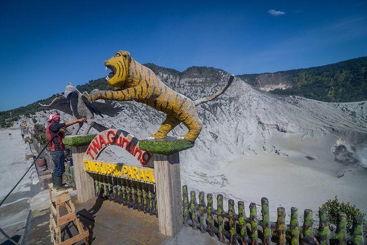 Petugas membersihkan debu vulkanik di sekitar Kawah Ratu pascaerupsi Gunung Tangkuban Parahu, Kabupaten Subang, Jawa Barat, Minggu (28/7/2019). Pos Pengamatan Gunung Api Tangkuban Parahu PVMBG mecatat pada Minggu pagi (28/7) amplitudo getaran berkisar di angka 0,5 mm dibandingkan saat erupsi pada Jumat (26/7) yang mencapai lebih dari 50 mm.