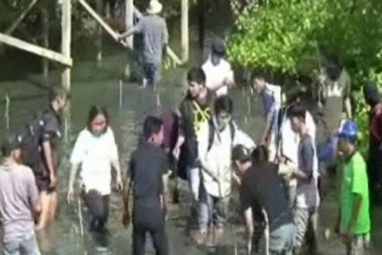 Puluhan wisatawan Jepang yang berwisata di Kabupaten Polewali Mandar, Sulawesi Barat, Kamis (2/3/2017) mengabadikan kunjungan wisata mereka dengan cara bertanam mangrove di Kawasan Mangrove Binung.