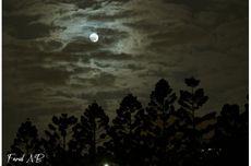 Bulan Purnama Terakhir Dekade Ini Terjadi Hari Ini, Bagaimana Rupanya?