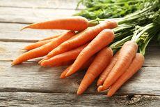 6 Manfaat Wortel Bagi Kesehatan, Sayuran dengan Gizi Sempurna