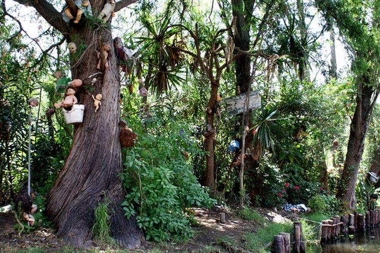Pulau boneka penuh misteri di area sebuah kanal Meksiko.