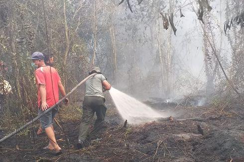 Selain Cuaca, Ada 2 Sebab Kebakaran Hutan Tahun Ini Luar Biasa Parah