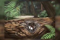 Fosil Laba-laba Usia 99 Juta Tahun Ditemukan, Ungkap Kasih Ibu ke Anak