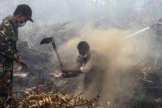Kebakaran Hutan, Pemerintah Didesak Audit Perusahaan Pemilik Konsesi