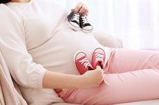 Cegah Anemia, Ibu Hamil Perlu Konsumsi Tablet Tambah Darah