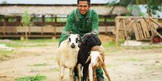 Lewat DD Farm, Dompet Dhuafa Berdayakan Masyarakat Korban PHK