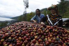 Gayo Coffee Trail, Pengembangan Pariwisata Aceh Melalui Kopi