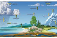 Siklus Hidrologi: Jenis dan Komponen Pembentuknya