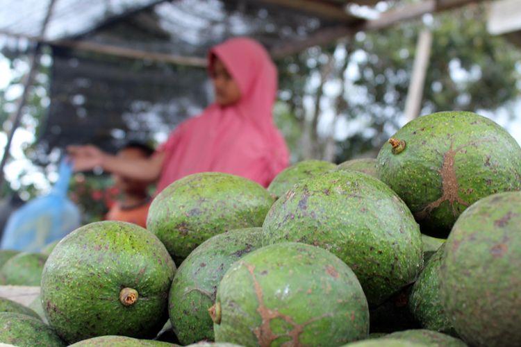 Wisatawan membeli aneka buah untuk oleh-oleh di Desa Buntul Kepies, Kecamatan Permata, Kabupaten Bener Meriah, Sabtu (31/10/2020)