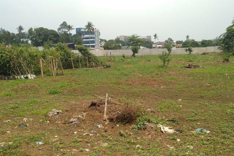 lokasi tempat ditanamnya pohon yang dipindahkan dari Monas ke Kebun Bibit Jagakarsa, Jakarta Selatan, Rabu (29/1/2020)