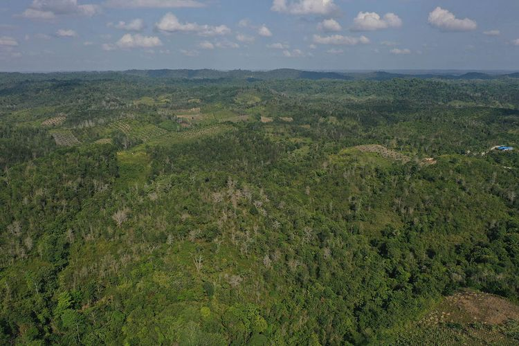 Foto aerial kawasan Kecamatan Sepaku, Penajam Paser Utara, Kalimantan Timur, Rabu (28/8/2019). Sepaku dan Samboja, Kutai Kartanegara akan menjadi lokasi ibu kota negara baru Indonesia.