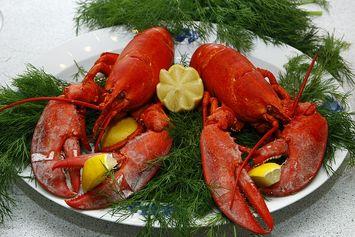 [POPULER Food] 7 Soto Rekomendasi di Semarang | Perjalanan Lobster Jadi Makanan Mewah