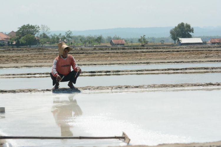 Petani garam di Desa Bunder, Kecamatan Pademawu saat menguji kadar garam di petak garamnya.