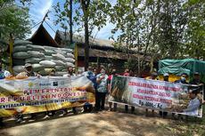 Bulog Dapat Mandat dari Pemerintah Sediakan Pasokan dan Jaga Distribusi Jagung