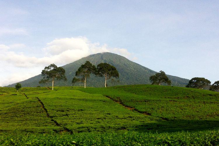 Gunung Dempo kota Pagaralam, Sumatera Selatan.