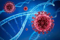 Di AS telah Ditemukan 7 Varian Baru Virus Corona
