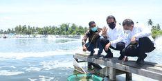 Menteri Trenggono: Tambak Udang Kementerian KP di Aceh Timur Ciptakan Multiplier Effect