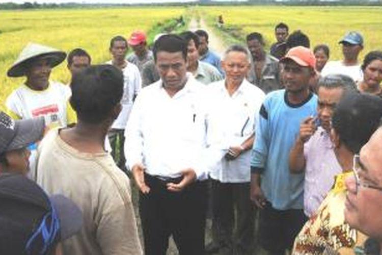 Menteri Pertanian Andi Amran Sulaiman mengatakan, dari hasil kunjungannya ke berbagai daerah ditemukan harga gabah senilai Rp 3.000 hingga Rp 3.400 per kilogram, sementara harga beras dari petani Rp 6.000 hingga Rp 7.200 per kilogram.