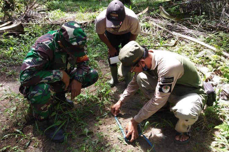 Petugas BBKSDA dan TNI mengukur jejak tapak harimau di Desa Kota Garo, Kecamatan Tapung, Kabupaten Kampar, Riau, Minggu (14/6/2020).