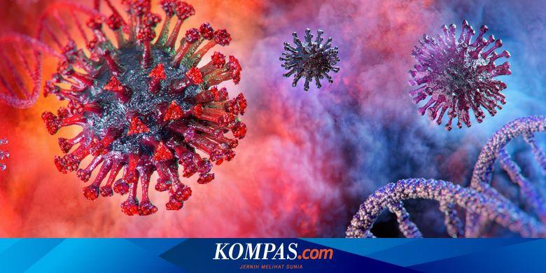 Masa Inkubasi Virus Corona Bisa Lebih Lama, Studi