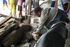 Heboh Jagal Kucing di Medan dan Hilangnya Kucing Sonia yang Bernama Tayo