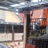 Viral, Video Puluhan Monyet Geruduk Pemukiman Warga di Kalsel, Ini Ceritanya