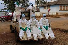 Jadi Epidemi di Afrika, Bagaimana Gejala hingga Pengobatan Ebola?