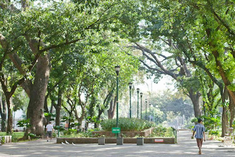 Taman Suropati di Jakarta Pusat.