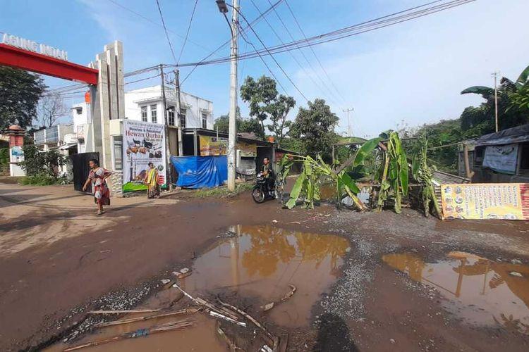 Warga Banjar Agung melakukan aksi tanam pohon pisang di jalan akses menuju Terminal pakupatan Serang yang rusak.