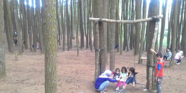 Rombongan keluarga, kantor, kulihanan, komunitas, memanfaatkan waktu libur ke Hutan Pinus Dlingo ini. Hutan terletak di Desa Dlingo, Mangunan, Bantul, DI Yogyakarta. Hutan Pinus ini makin populer sebagai lokasi hunting foto bahkan pre-wedding.