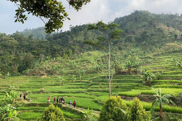 Pemandangan trekking di Leuwi Hejo, Bogor, Jawa Barat