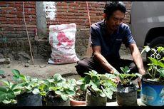 Amnesti Disetujui, Baiq Nuril Menanti Terbitnya Keputusan Jokowi