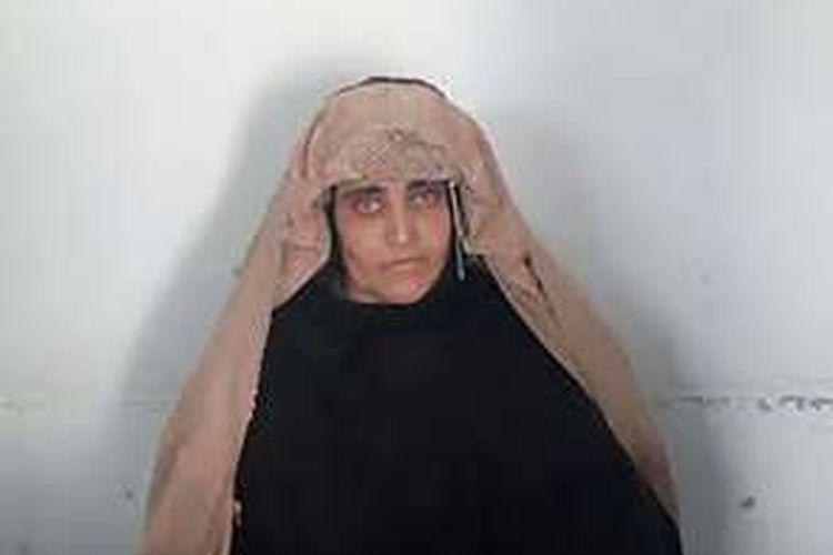Wajah Sharbat Gula, kini berusia 44 tahun, yang dirilis Biro Penyidik Federal Pakistan (FIA).