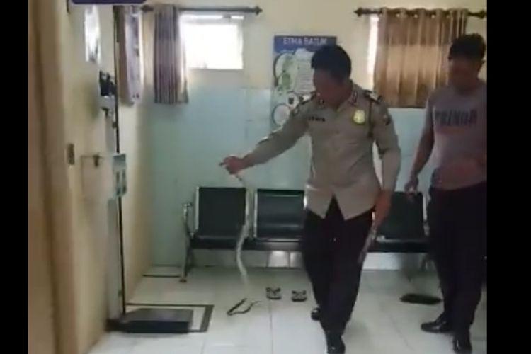Potongan video polisi yang menangkap ular Cobra sepanjang 1,5 meter dari ruang pemeriksaan Puskesmas Jorongan.