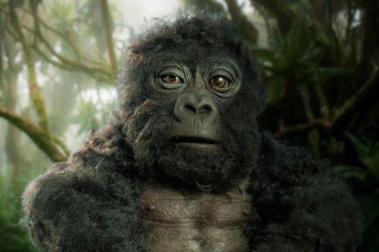 Robot gorila mata-mata yang digunakan untuk pembuatan film dokumenter.