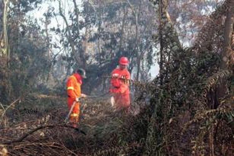 Ilustrasi: Petugas Kementerian Kehutanan memadamkan kebakaran hutan di Pekanbaru, Riau, 320 kilometer dari Singapura, 20 Juni 2013. Kebakaran hutan ini mengakibatkan kabut asap menyelimuti negara tetangga.