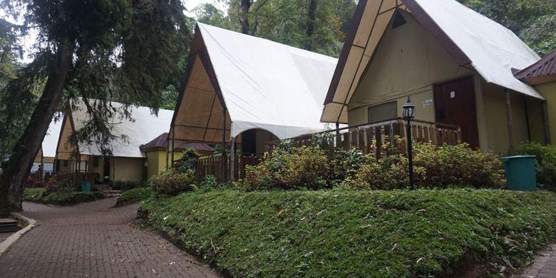Lawu Forest Camp di Mojosemi Forest Park, Kabupaten Magetan, Jawa Timur, Rabu (23/1/2019).