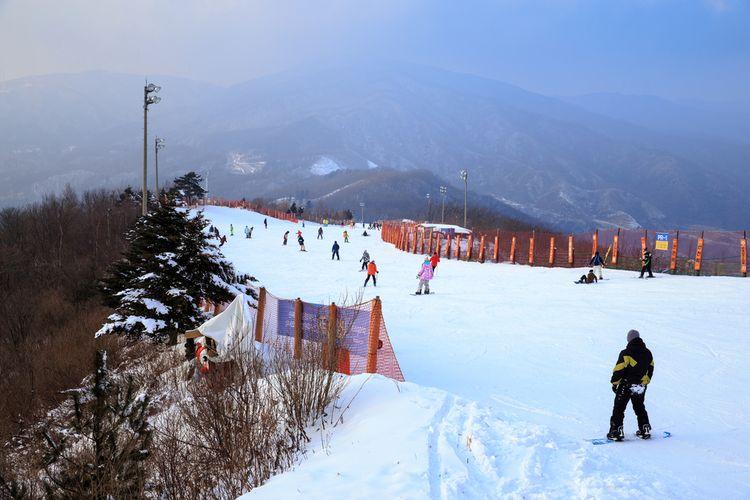 ILUSTRASI - Ski di Gangwon, Korea Selatan