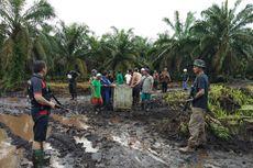 Hasil Pemeriksaan, Harimau Bonita Mengidap Tumor di Bagian Perut