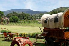 Viral Video Kuda di The Ranch Cisarua, Seperti Apa Tempatnya?