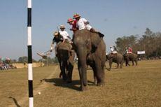 Thailand Gelar Lagi Polo Gajah Piala Raja