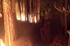 Api di Gunung Tampomas Masih Menyala, Luas Lahan yang Terbakar Capai 154 Hektare