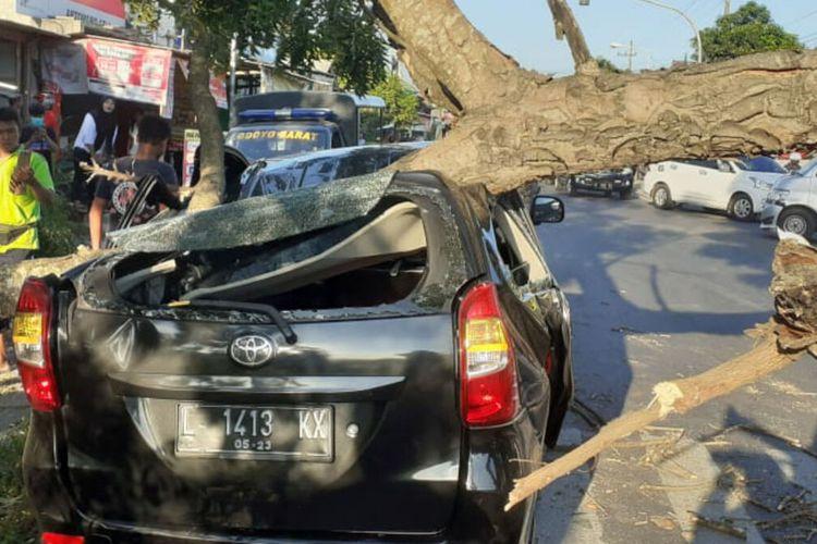 Mobil Toyota Avanza milik Sanjaya tertimpa pohon tumbang di traffic light di jalan raya Kademangan, Kabupaten Blitar, Sabtu sore (12/6/2021)