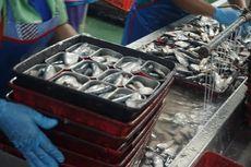 Antisipasi Virus Corona, KKP Akan Uji Lab Ikan Impor Asal China