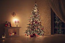 Cara Cerdas Memanfaatkan Pohon Natal Bekas
